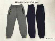 SPODNIE DRESOWE CHŁOPIĘCE (8-16) HB8532